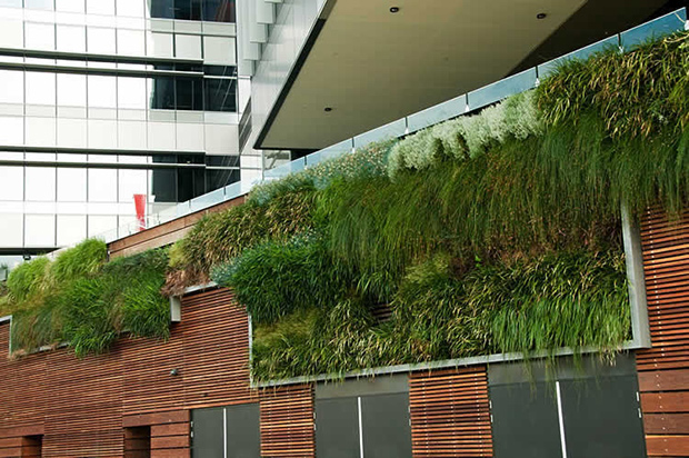 StrataData---Rooftop-Gardens-(5)